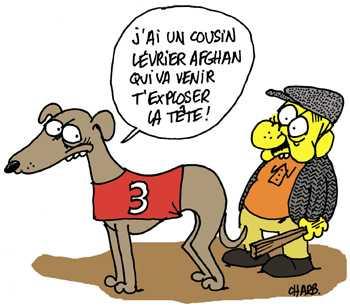 921-PUCE-Charb-levrier.jpg